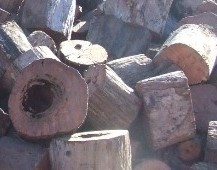 Ironbark cut into rounds, ready for splitting.